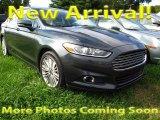 2015 Guard Metallic Ford Fusion SE #107952145