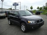 2006 Black Ford Escape XLT V6 4WD #10783562