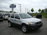 2006 Silver Metallic Ford Escape XLT V6 #10783566
