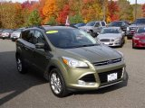 2013 Ginger Ale Metallic Ford Escape SEL 2.0L EcoBoost 4WD #108202343