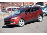 2016 Sunset Metallic Ford Escape SE 4WD #108435654