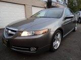 2008 Bold Beige Metallic Acura TL 3.2 #108537522