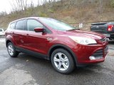 2016 Sunset Metallic Ford Escape SE 4WD #108643672
