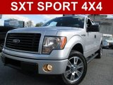 2014 Ingot Silver Ford F150 STX SuperCab 4x4 #108673603