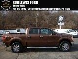 2012 Golden Bronze Metallic Ford F150 XLT SuperCrew 4x4 #109007535