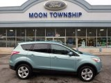 2013 Frosted Glass Metallic Ford Escape SE 1.6L EcoBoost 4WD #109113933