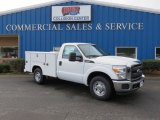 2016 Ford F250 Super Duty XL Regular Cab Chassis Data, Info and Specs