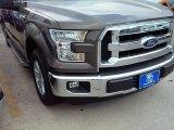 2015 Caribou Metallic Ford F150 XLT SuperCrew #109444796