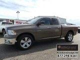 2010 Light Graystone Pearl Dodge Ram 1500 SLT Quad Cab #109503825