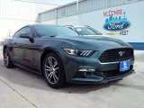 2016 Guard Metallic Ford Mustang EcoBoost Coupe #109582510