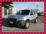 2006 Silver Metallic Ford Escape XLT V6 #109689322