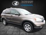 2010 Urban Titanium Metallic Honda CR-V EX AWD #109723948