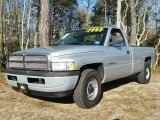 2001 Bright Silver Metallic Dodge Ram 1500 ST Regular Cab #109797703
