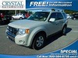 2009 Brilliant Silver Metallic Ford Escape Limited V6 #109834779