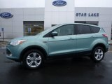 2013 Frosted Glass Metallic Ford Escape SEL 1.6L EcoBoost 4WD #109872786