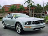 2006 Satin Silver Metallic Ford Mustang V6 Premium Coupe #1093521