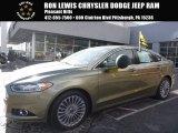 2013 Ginger Ale Metallic Ford Fusion Titanium AWD #110003887