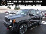2016 Black Jeep Renegade Trailhawk 4x4 #110115554