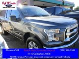 2015 Magnetic Metallic Ford F150 XLT SuperCab #110163782