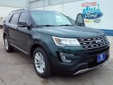 2016 Guard Metallic Ford Explorer XLT #110193555