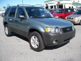 2006 Titanium Green Metallic Ford Escape XLT #11015567