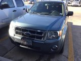 2011 Sterling Grey Metallic Ford Escape XLT V6 #110307263