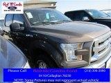 2016 Caribou Ford F150 XLT SuperCrew 4x4 #110335745