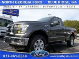 2016 Magnetic Ford F150 XLT Regular Cab 4x4 #110335629