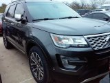 2016 Magnetic Metallic Ford Explorer Platinum 4WD #110370982