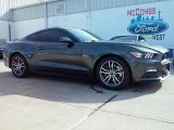 2016 Magnetic Metallic Ford Mustang GT Coupe #110396559