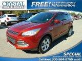 2014 Sunset Ford Escape SE 2.0L EcoBoost 4WD #110473142