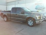 2016 Magnetic Ford F150 XLT SuperCab #110586175