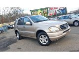 2001 Mercedes-Benz ML 320 4Matic