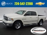 2010 Cool Vanilla Dodge Ram 1500 Big Horn Crew Cab 4x4 #110697868