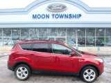 2013 Ruby Red Metallic Ford Escape SE 2.0L EcoBoost 4WD #110754703