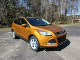 2016 Electric Spice Metallic Ford Escape SE #110780956