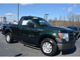 2014 Green Gem Ford F150 XL Regular Cab #110816767