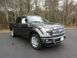 2016 Magnetic Ford F150 Platinum SuperCrew 4x4 #110944119