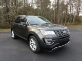 2016 Magnetic Metallic Ford Explorer XLT #110971233