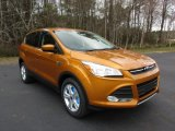 2016 Electric Spice Metallic Ford Escape SE #111213750