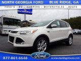 2016 White Platinum Metallic Ford Escape Titanium 4WD #111280285