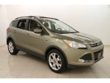 2013 Ginger Ale Metallic Ford Escape SE 1.6L EcoBoost #111631944