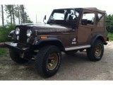Jeep CJ5 1977 Data, Info and Specs