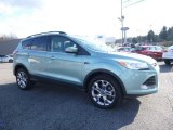 2013 Frosted Glass Metallic Ford Escape SEL 1.6L EcoBoost 4WD #111708277