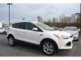 2014 White Platinum Ford Escape Titanium 2.0L EcoBoost 4WD #111809289