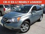 2010 Opal Sage Metallic Honda CR-V EX-L AWD #111891338