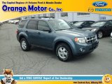2010 Steel Blue Metallic Ford Escape XLT V6 4WD #111891593