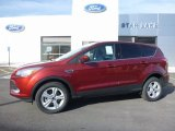 2016 Sunset Metallic Ford Escape SE 4WD #111927675