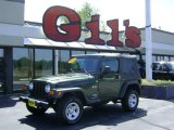 2006 Jeep Green Metallic Jeep Wrangler X 4x4 #11166153