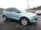 2013 Frosted Glass Metallic Ford Escape SE 1.6L EcoBoost #112033251